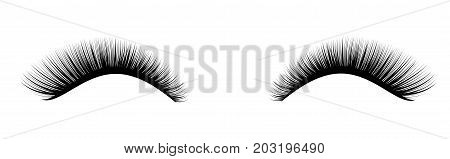 Eyelash extension. A beautiful make-up. Thick cilia. Mascara for volume and length. False