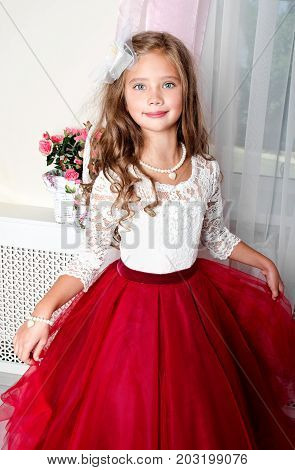 Adorable smiling little girl child in princess dress standing near the window