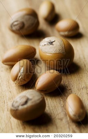 collection of shea and argan nuts, often used in natural cosmetics