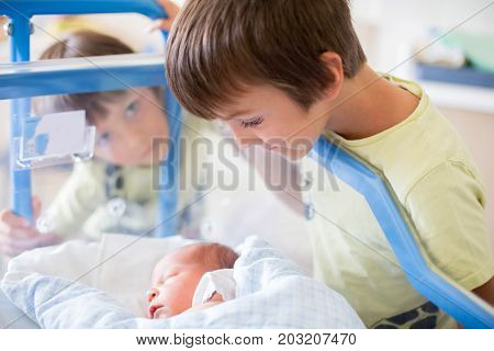 Beautiful Newborn Baby Boy, Laying In Crib In Prenatal Hospital, His Brothers Looking At Him