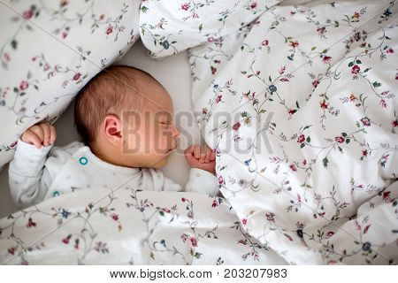 Beautiful Newborn Baby Boy In Bed. Infant Lying Down In Bed. Healthy Little Kid Shortly After Birth