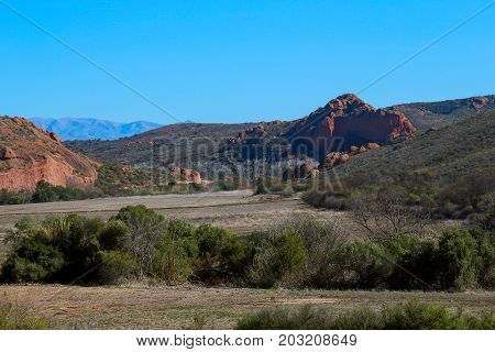Bushes In The Field With Mountains In The Foreground