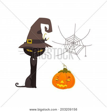 Halloween objects - spooky black cat in witch pointy hat, spider web and pumpkin lantern, cartoon vector illustration isolated on white background. Cartoon witch cat, Halloween pumpkin and spider web