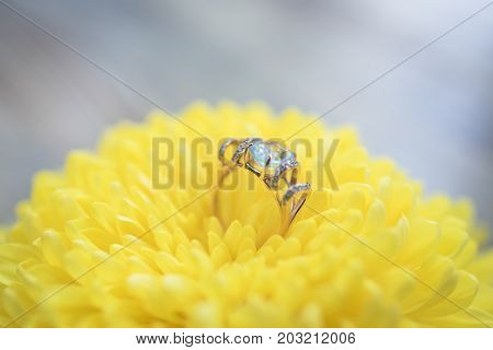 Gold ring with topaz and diamonds on a yellow flower
