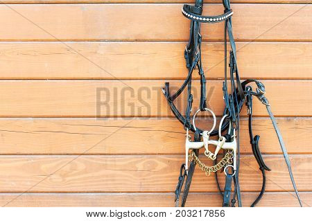 Horse bridle with decoration hanging on stable wooden wall. Front view. Closeup outdoors horizontal image with copy space.