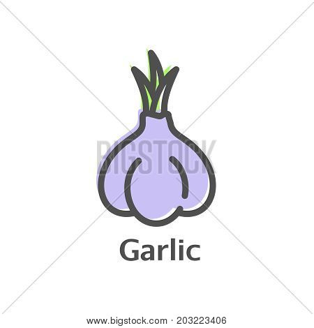 Garlic Thin Line Icon. Isolated Condiment Linear Style For Menu, Label, Logo. Detailed Vegetarian Fo