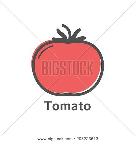 Tomato Thin Line Vector Icon. Isolated Vegetables Linear Style For Menu, Label, Logo. Simple Vegetar