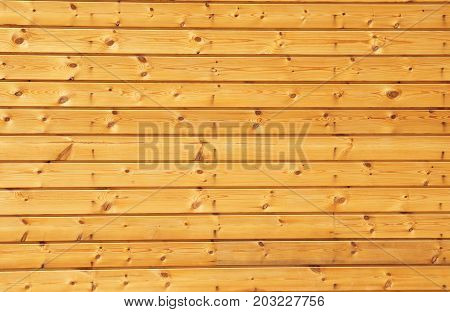 Background texture of finely slatted natural brown pine wood in a parallel pattern used in building decor and construction poster