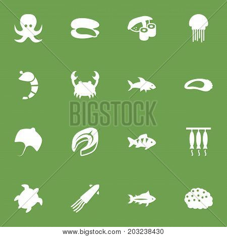 Collection Of Beefsteak, Stingray, Lobster And Other Elements.  Set Of 16 Seafood Icons Set.