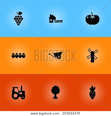 Collection Of Tray Of Eggs, Pushcart, Windmill And Other Elements.  Set Of 9 Harvest Icons Set.