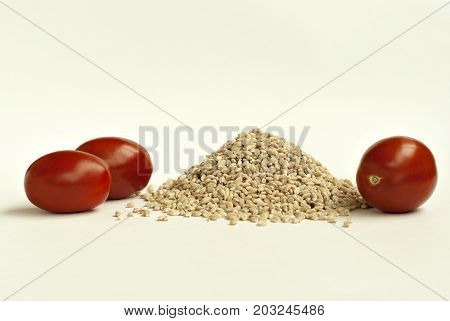 A small pile of pearl barley and three small tomatoes on a light background closeup