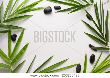 Bamboo leaf background. White paper with tropical leaf frame. Green bamboo leaf and sea beach pebbles flat lay. Blank page notepad top view. Natural spa or beauty banner template with text place