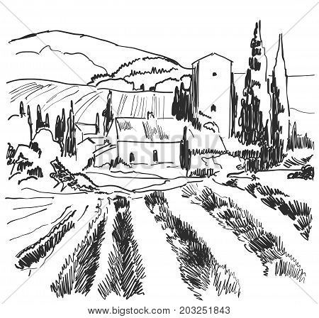 Vector illustration landscape nature with agrarian fields. Sketching