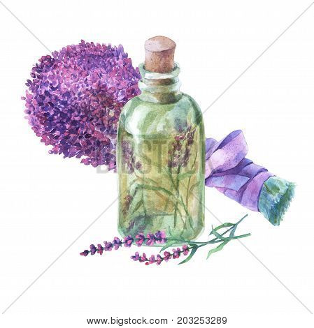 Bouquet of lavender. Essential lavender petals in a glass vial. Watercolor hand painting illustration on isolate white background.