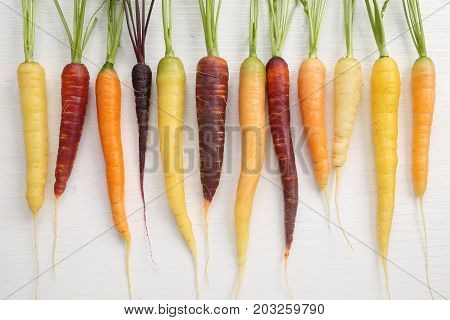 Colorful carrots on a wooden white background.