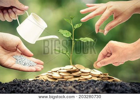 Business with csr and ethics / Green business