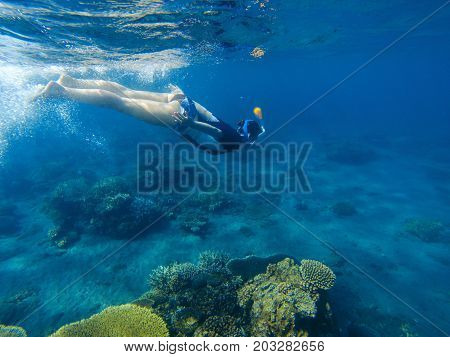 Woman swimming in blue sea. Snorkeling girl in full-face snorkeling mask. Coral reef in shallow sea. Snorkel undersea. Seashore underwater photo. Active seaside vacation. Water sport in tropical sea