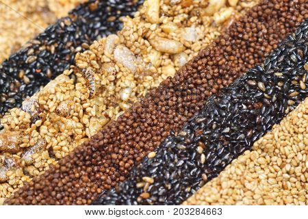 Closeup of different types of multigrain bars / Healthy food and snack concept