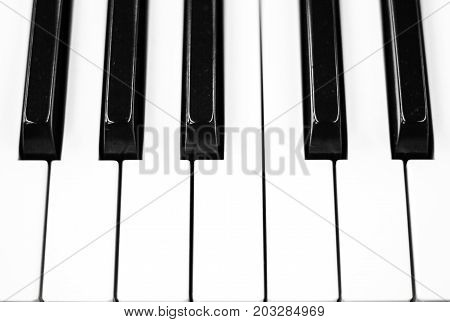 Piano keys closeup photo. Black and white keyboard of musical instrument. Fono lesson or orchestra concert banner template. Classical music abstract background. One octave note keys. Monochrome piano