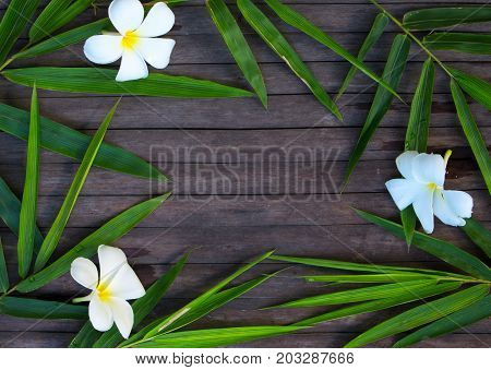 Bamboo leaf frame on rustic wooden background. Bamboo leaf and frangipani flower on timber. Plumeria decor flat lay. Spa beauty banner. Exotic island vacation postcard. Tropical nature. Floral wreath