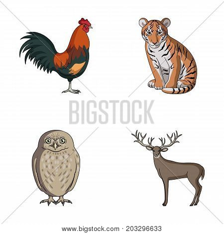 Rooster, tiger, deer, owl and other animals.Animals set collection icons in cartoon style vector symbol stock illustration .