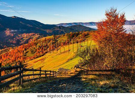 Wooden Fence Through Rural Fields On Hills In Fog