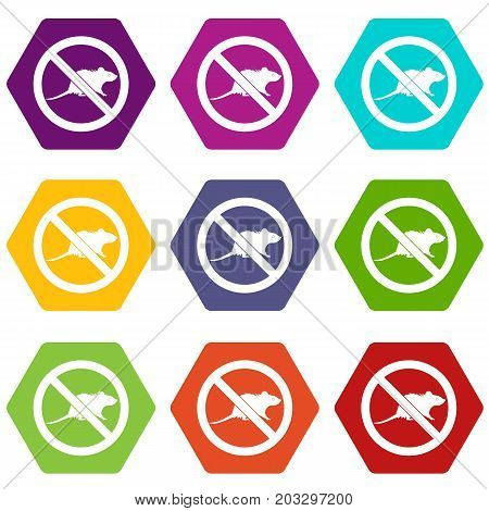 No rats sign icon set many color hexahedron isolated on white vector illustration