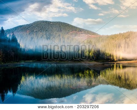 Gorgeous Foggy Sunrise On The Lake In Forest