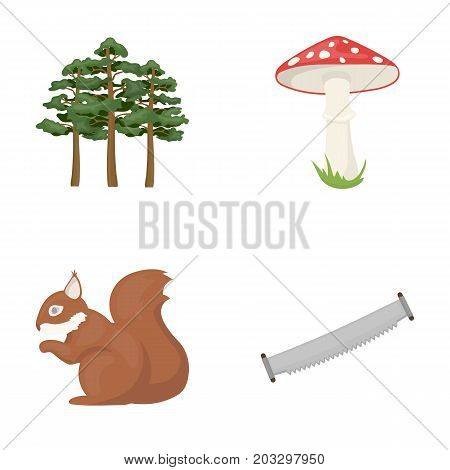 Pine, poisonous mushroom, tree, squirrel, saw.Forest set collection icons in cartoon style vector symbol stock illustration .