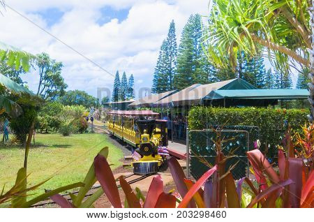 Oahu June 2012: this red train take tourist visiting the big Dole pinapple plantation in Oahu Island Hawaii. This is not only a tourists attraction infact from this place a lot of fruites are exported to other countries.
