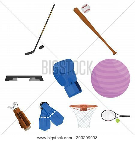 Sport and fitness set icons in cartoon style. Big collection of sport and fitness vector symbol stock