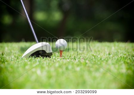 Golf ball on tee in front of golf driver on a gold course grass green fieldthe driver positioned ready to hit the golf ball