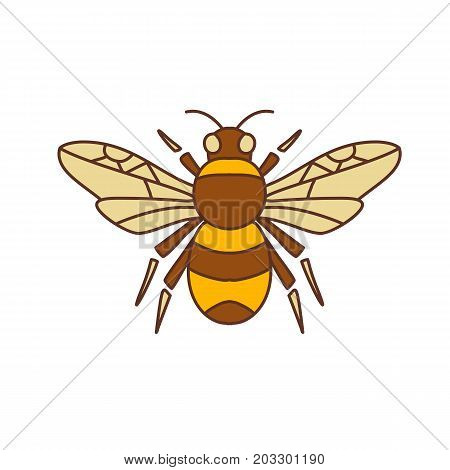 Icon style illustration of Bumble Bee Bumblebee member of genus Bombus part of Apidae with open wing on isolated background.