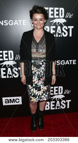 NEW YORK - MAY 23: Alison Wright attends the AMC's 'Feed The Beast' premiere on May 23, 2016 in New York City.