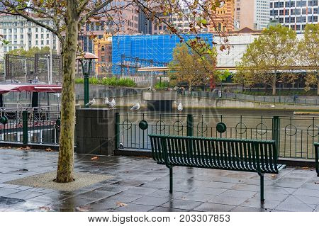 Bench On River Bank On Rainy Day