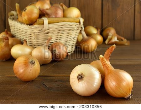 Large onion harvest in a wicker basket. Bulb onion is rich in vitamins useful spring. Onion peel on a wooden background. Large onions can be seen from above.