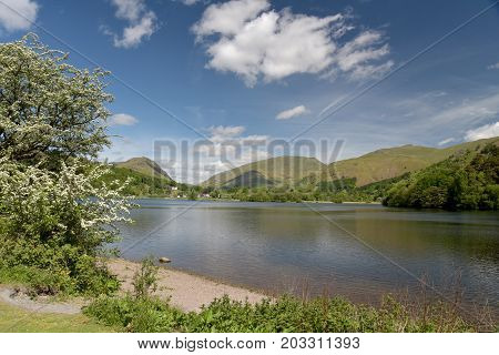 Shore of Grasmere in the English Lake District