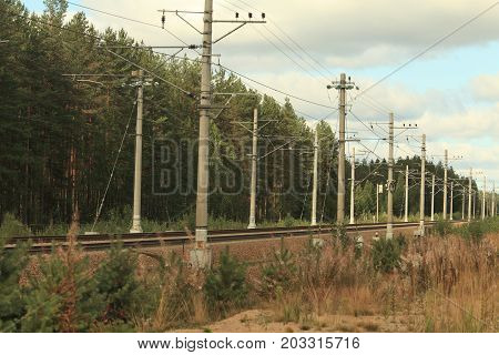 electrified railway going into the distance through forest