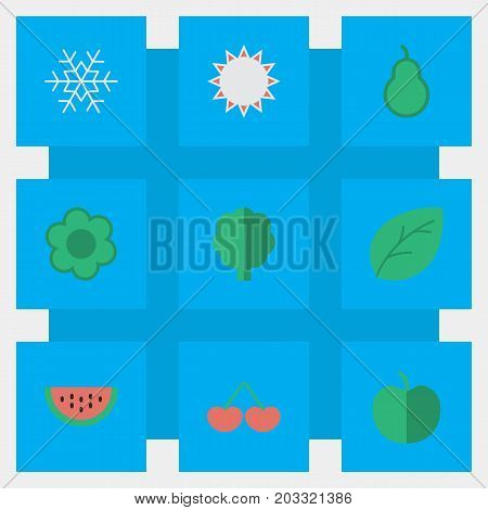 Elements Sheet, Berry, Wood And Other Synonyms Apple, Snowflake And Sunny.  Vector Illustration Set Of Simple Horticulture Icons.