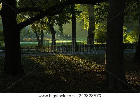 First sunrays at autumn morning in Topcider park, Belgrade, Serbia