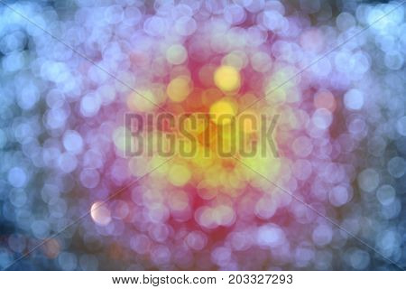 Light Bult From The Garden  In Christmas And Newyear Festival