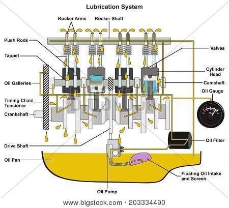 Vehicle Lubrication System infographic diagram showing cross section of car engine with all parts and path of lubricant oil and pan filter and gauge for mechanical and road safety awareness education poster