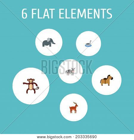 Flat Icons Waterbird, Pony, Trunked Animal And Other Vector Elements