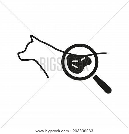 Icon of dermatology examination. Magnifying glass, dog, bacterium. Veterinary clinic concept. Can be used for topics like animal care, skin exam, treating animal