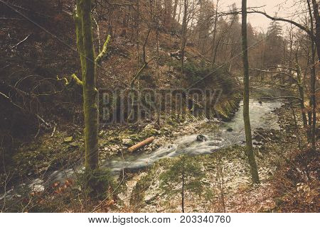 Scenery of Mountain stream water flow and fast among mossy on stone with forest background in Bled, Landscape of curve small clear river flowing through foothills with rocks and trees line covered in moss at Slovenia in autumn season