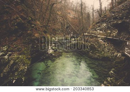 Green water pool among stone foothills in deep jungle at Slovenia, Landscape of natural forest pond with rocks covered in moss and brown tree mountain foot background in Bled