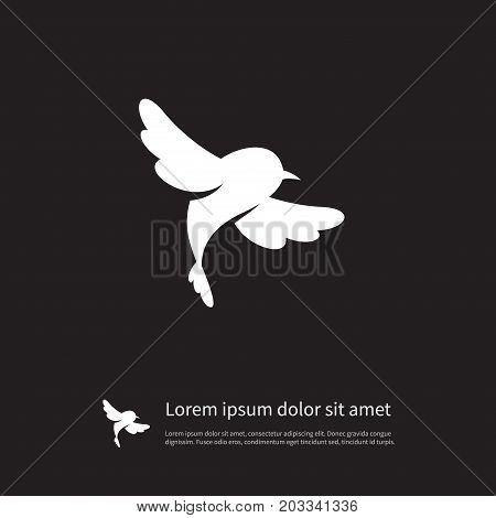 Fowl Vector Element Can Be Used For Fowl, Sparrow, Bird Design Concept.  Isolated Sparrow Icon.