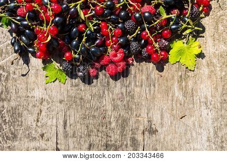 Fresh Colorful Berries On Wooden Background