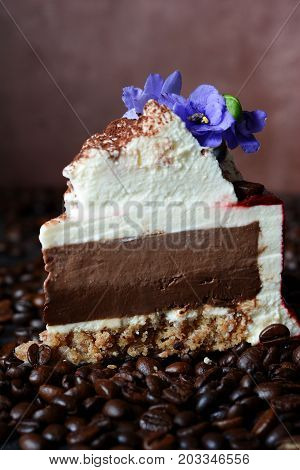 tiramisu cake with chocolate mousse and mascarpone cream