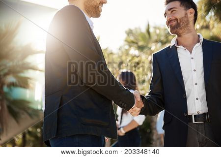 Portrait of glad businessman shaking hands with business partner